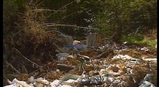 Fernando Pessa no jardim do Areeiro