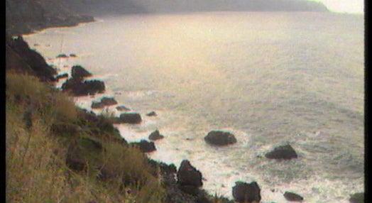 Limpeza de crude da costa madeirense