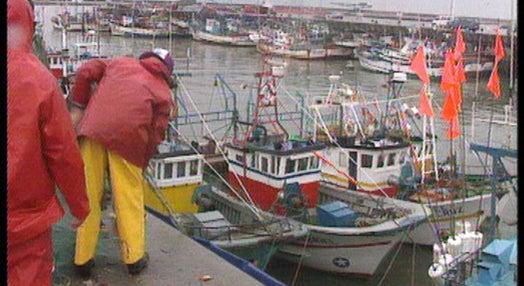 Reivindicações dos pescadores